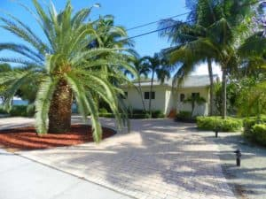 Yellow house with large palm tree in center bed